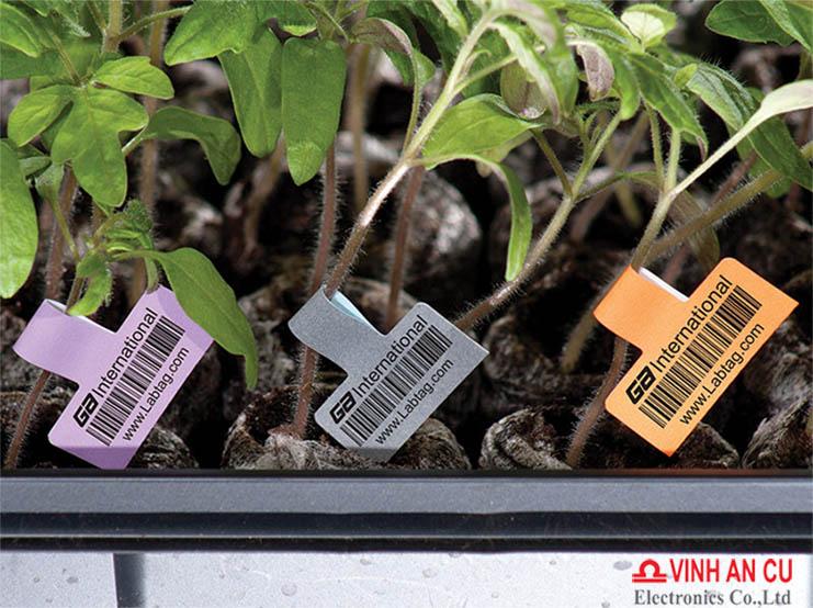 Ứng dụng DNA Barcode trong việc bảo vệ và phát triển rừng